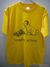 Tシャツ 1662-1.jpg