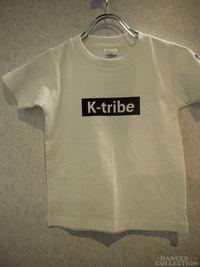 Tシャツ 1893-1.jpg