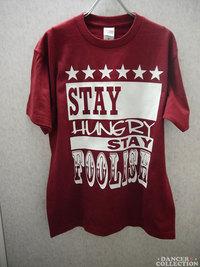 Tシャツ 213-1.jpg
