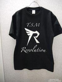 Tシャツ 281-1.jpg